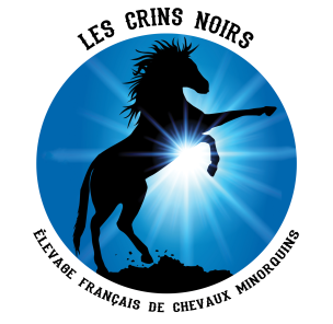 cropped-lcn-rond-police-noit11.png