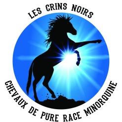 logo officiel des crins noirs